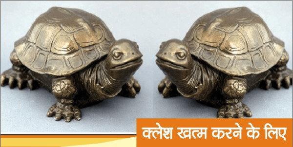Feng Shui Tips, Tortoise, Hindi, For Grah shanti,