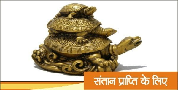 Feng Shui Tips for Tortoise, Hindi, Vastu upay,