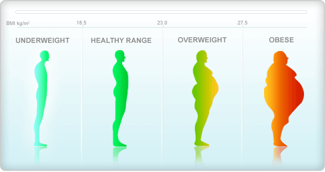 Body Mass Index (BMI) In Hindi, Information, Jankari