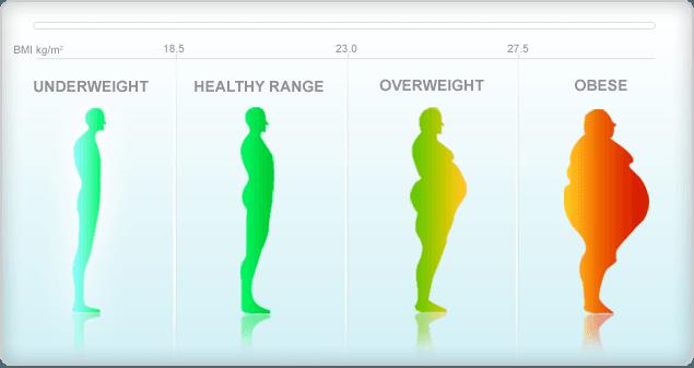 Body Mass Index (BMI) In Hindi, Information, Jankari