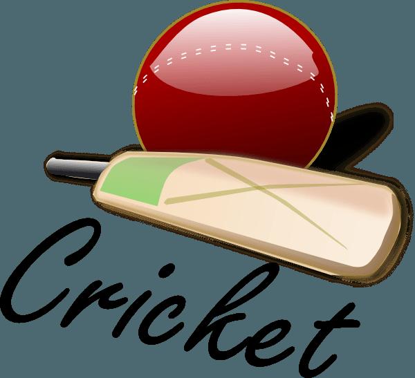 Most Interesting Cricket Rules in Hindi, Niyam,