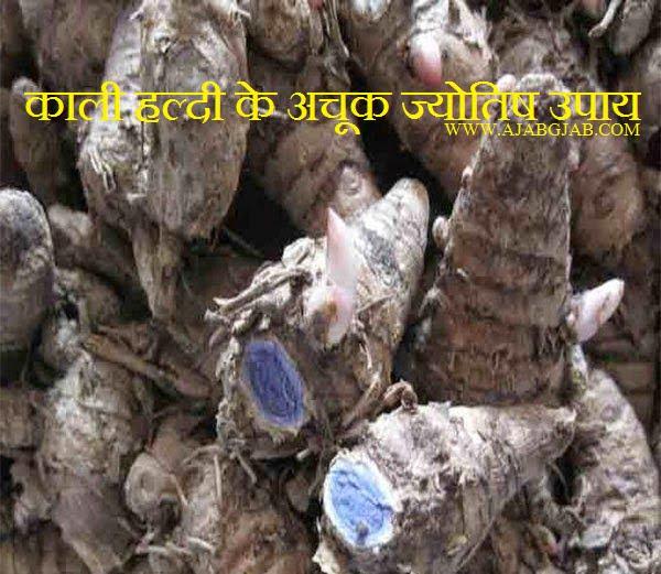 Astrological Measures Of Kali Haldi, Kali Haldi ke Jyotish Upay