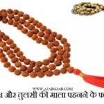 रुद्राक्ष और तुलसी की माला पहनने के फायदे