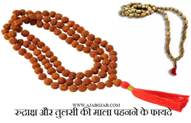 Benefits Of Rudraksha and Tulsi Mala, Hindi, Beeds,