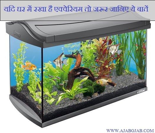Hindi Vastu Tips For Aquarium, Feng Shui Tips, Upay,