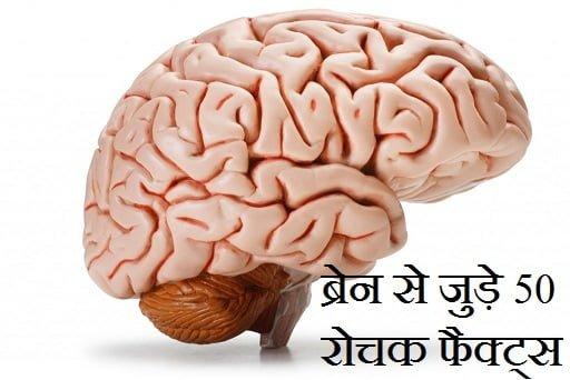 Interesting Facts About Human Brain, Hindi, Amazing Facts, Rochak Facts,