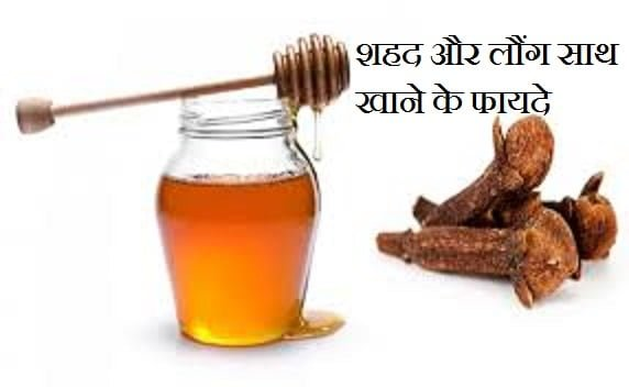 Health Benefits Of Honey With Clove, Hindi, Information,Health Benefits Of Honey With Clove, Hindi, Information,