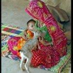 बिश्नोई समाज की महिलाएं हिरण के बच्चों को पालती है मां की तरह, पिलाती है अपना दूध