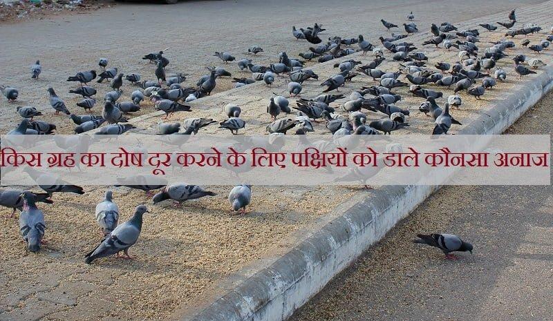 Anaj Ke Jyotish Upay
