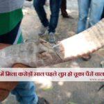 भारत में मिला करोड़ों साल पहले लुप्त हो चूका पैरों वाला सांप