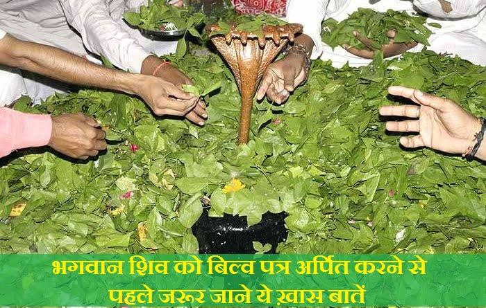 Facts about Bilva Patra (Bel Patra) in Hindi