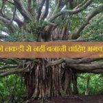 किन पेड़ों की लकड़ी से नहीं बनानी चाहिए भगवान की मूर्ति   भविष्य पुराण