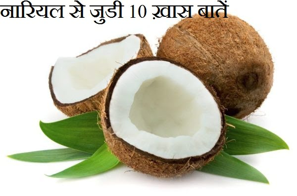 Facts About Coconut in Hindi