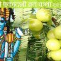 Amalaki Ekadashi Vrat Katha In Hindi
