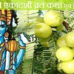 आमलकी एकादशी व्रत कथा एवं व्रत विधि | Amalaki Ekadashi Vrat Katha In Hindi