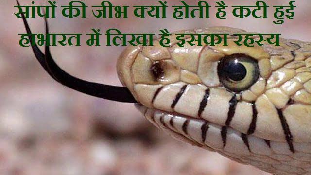 Mahabharata Snake Story In Hindi