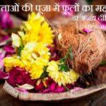 देवताओं की पूजा में फूलों का महत्व