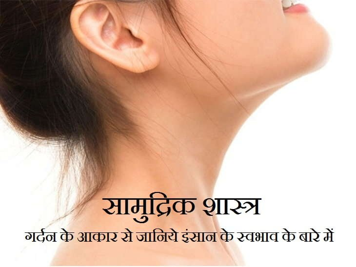 Samudrik Shastra About Neck