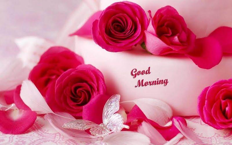 Download Good Morning Wallpaper