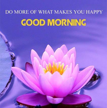 Good Morning DPHd