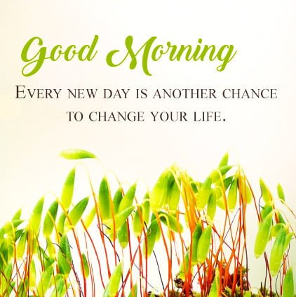 Good Morning Facebook Dp Free Download