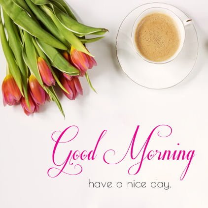 Good Morning Hd Images