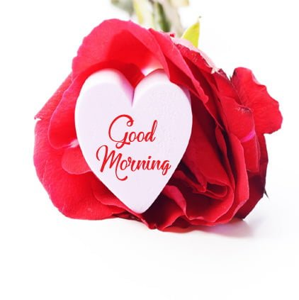 Good Morning Hd Pictures