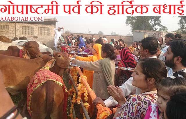 Gopashtami HD Pictures