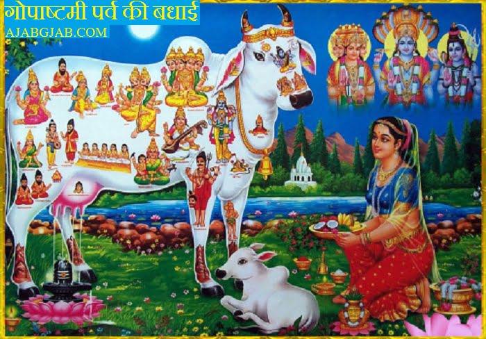 Gopashtami HD Wallpaper