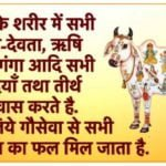 Gopashtami Messages