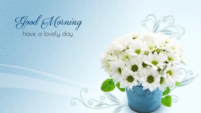 Happy Good Morning Hd Photos