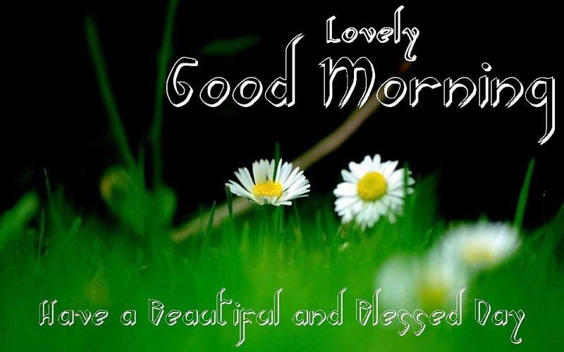 Happy Good Morning Wallpaper