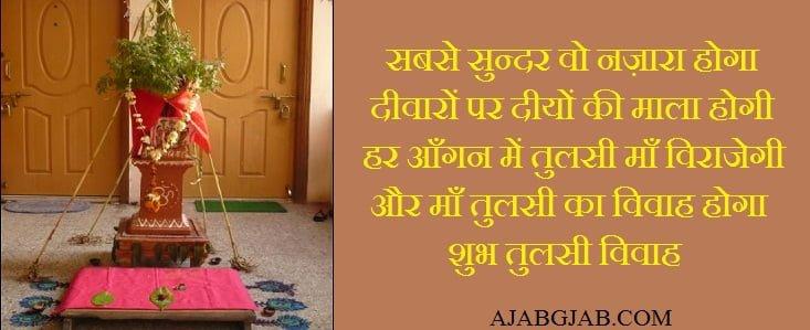 Tulsi Plant Hd Wallpaper: Tulsi Vivah Messages, Wishes, Shayari, Status, Dev Uthani