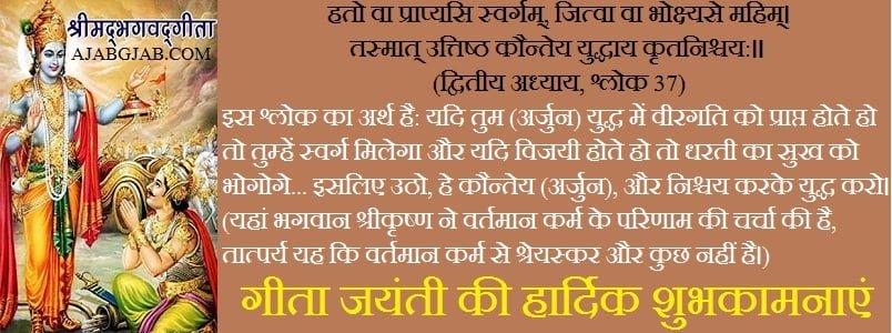 Gita Jayanti Hindi Wishes