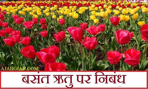 Basant Ritu Essay In Hindi