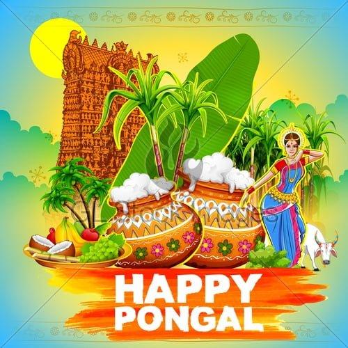 Happy Pongal ImagesDownload