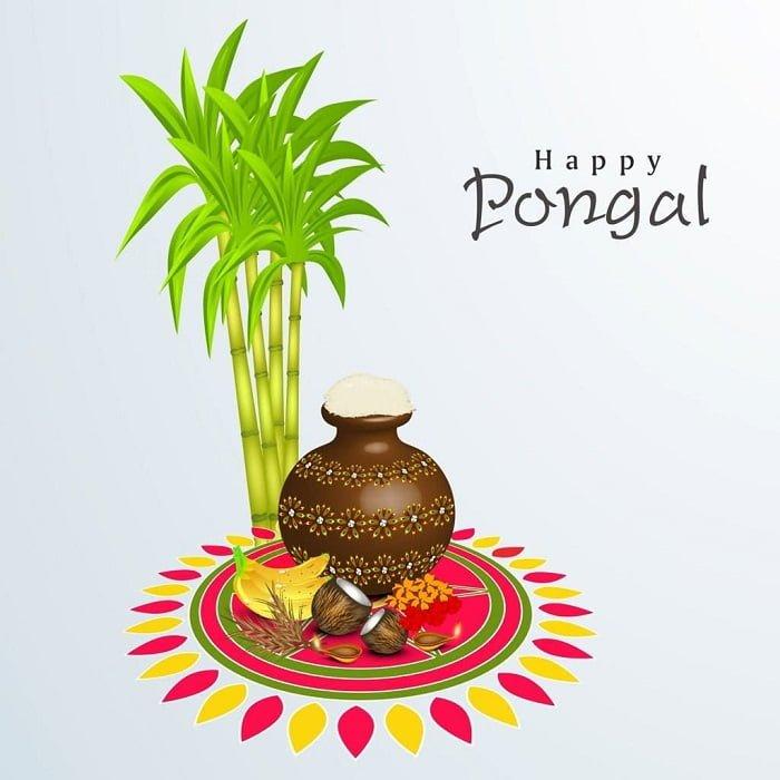 Happy Pongal Photos
