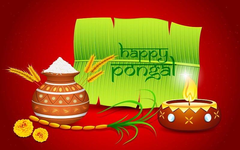 Happy Pongal Pictures