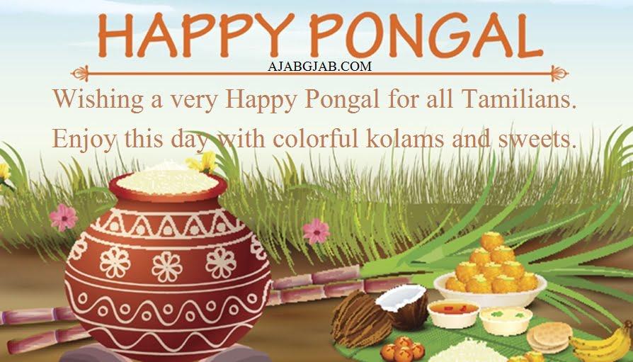 Happy Pongal Slognas