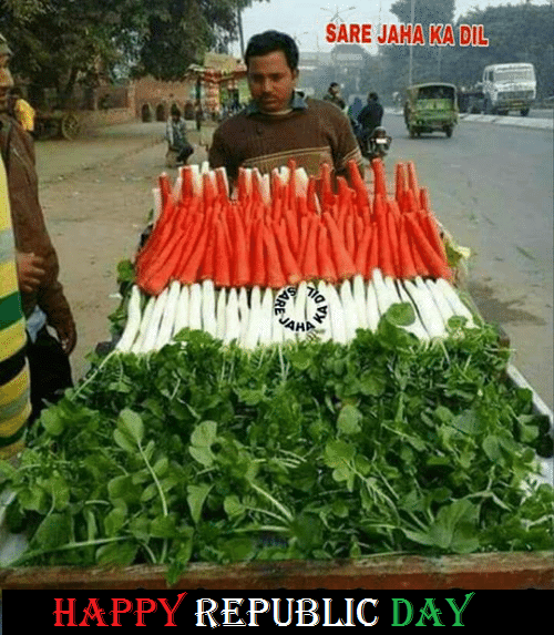 Happy Republic Day Funny Pictures