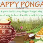 Pongal Status