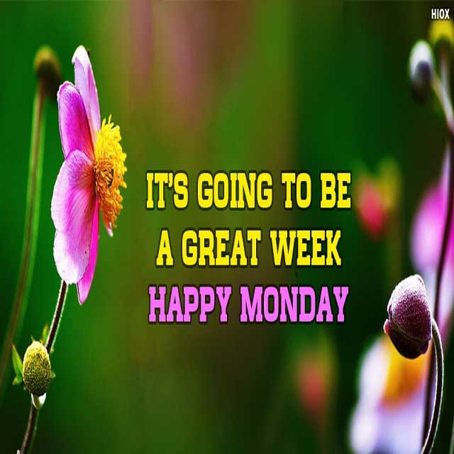 Happy Monday Good Morning Hd PicturesFor Facebook