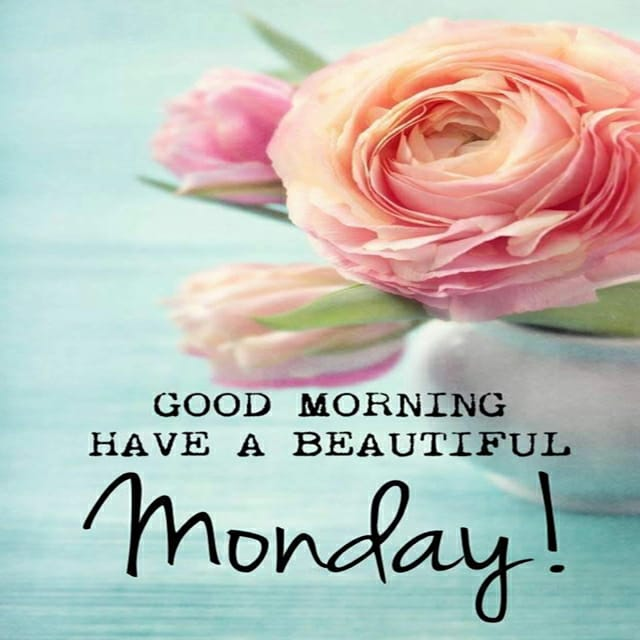 Happy Monday Good Morning Hd Pictures