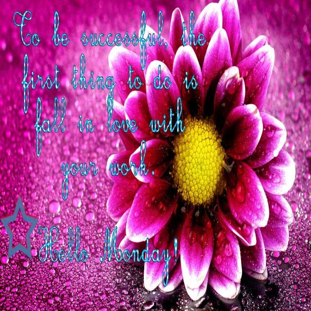 Happy Monday Good Morning Hd WallpaperFor Whatsapp
