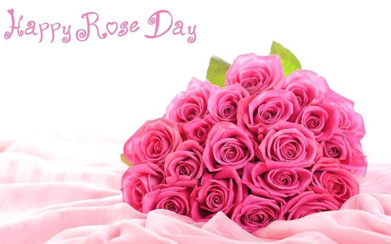 Happy Rose Day Facebook Dp