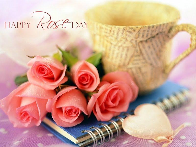 Happy Rose Day WhatsApp Dp 2019