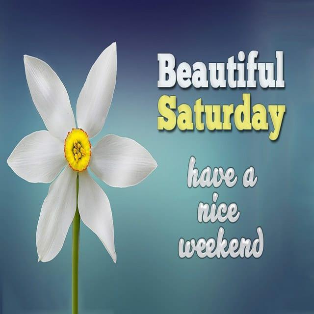 Happy Saturday Hd Photos For Facebook