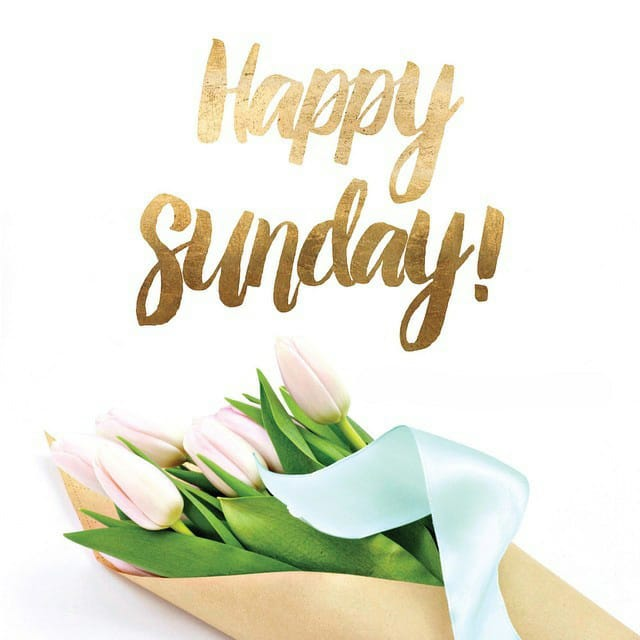 Happy Sunday Hd Photos For WhatsApp