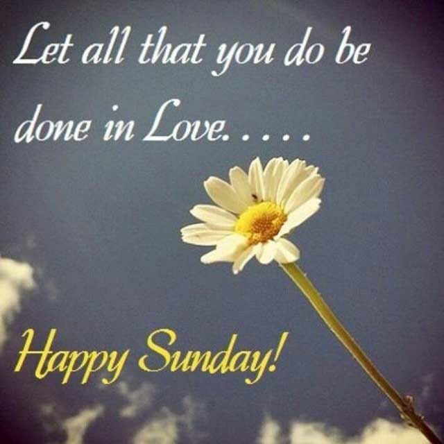 Happy Sunday Hd Pictures