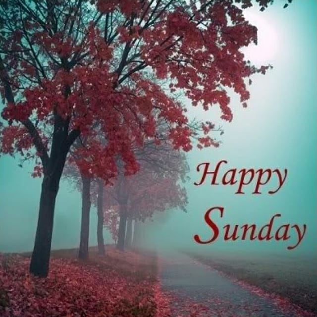 Happy Sunday Hd PicturesFor Facebook